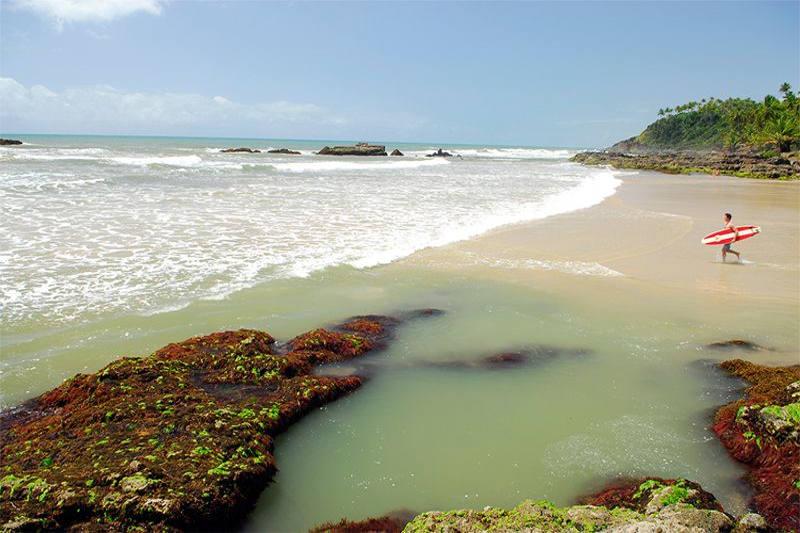 Praia com natureza exuberante