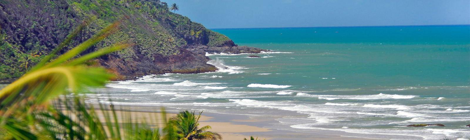 Vista panorâmica da praia em meio a natureza com mar azul céu
